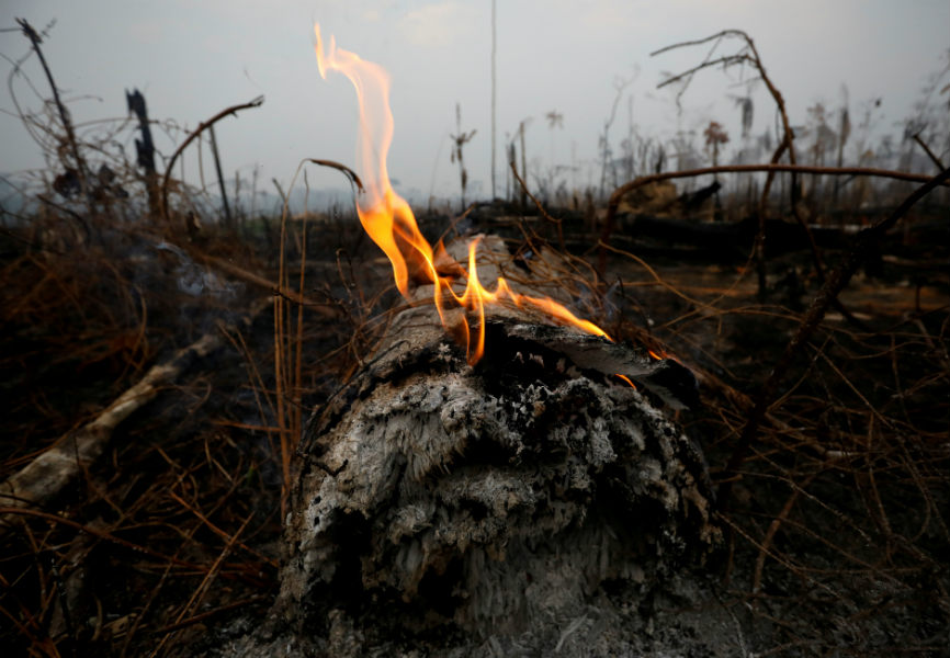 A tract of Amazon jungle after a fire in Brazil. REUTERS.